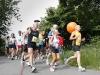 Zugläufer Marathon Fürth 2010