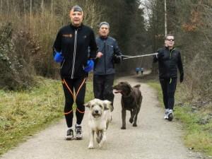 Winter Training Hund